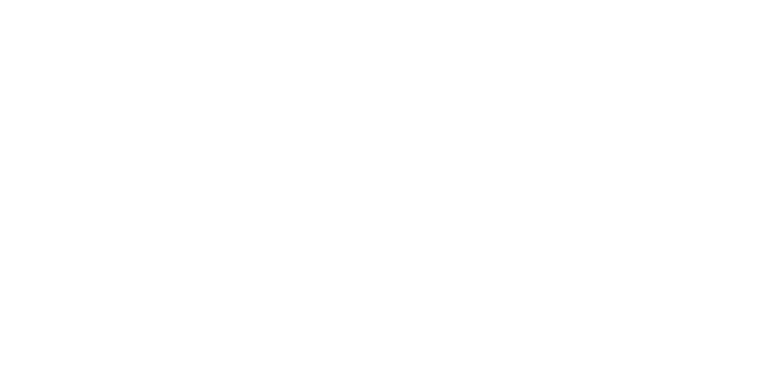 fiat_cover